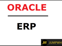 Oracle ERP Support Consultant