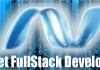 dotnet full stack developer