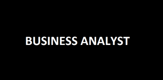 Business analyst Business Analyst – Reporting and Visualization - PACE