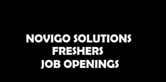 Freshers job Openings at Novigo Solutions, Mangalore